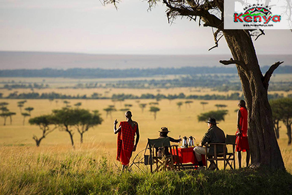 hd-kilima-camp-maasai-mara-other-bush-breakfast-kilima