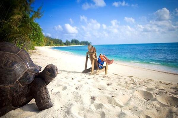 Seychelles-Beach-Package