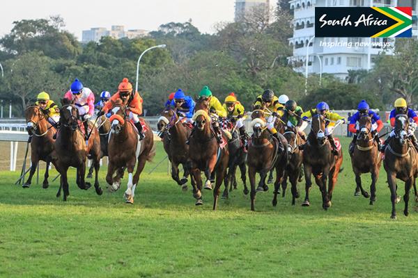 durban-july-racing-horses